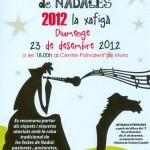 concert_de_nadales